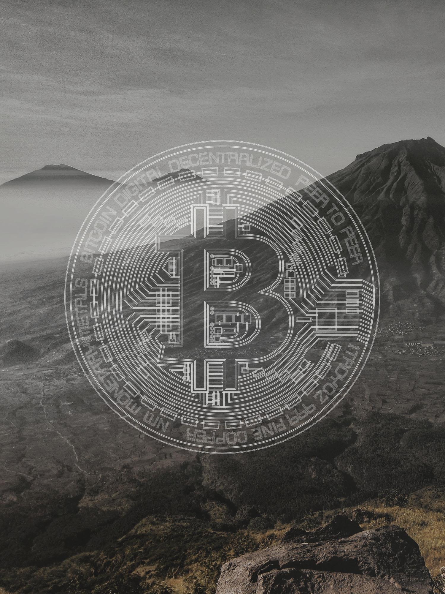 Bitcoin Maximalist or Minimalists